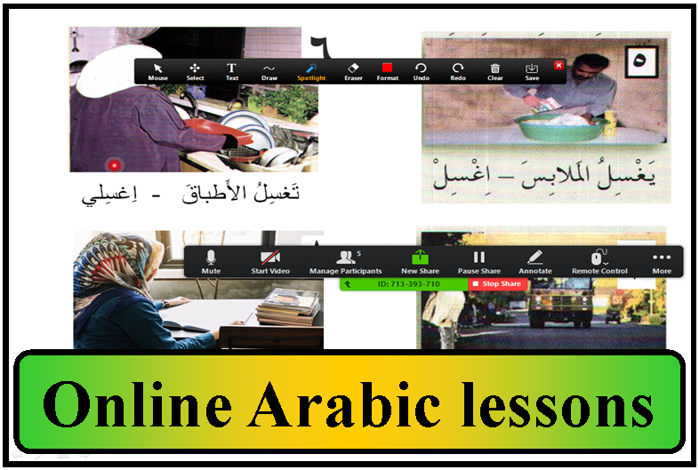 online lessons icon